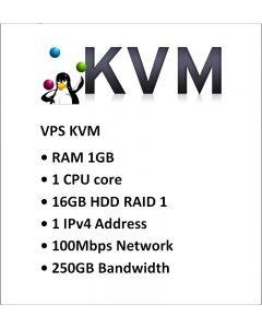 Datapaket Hosting VPS1-KVM